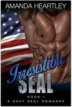 Hot Military Romance: Irresistible Seal by Amanda Heartley
